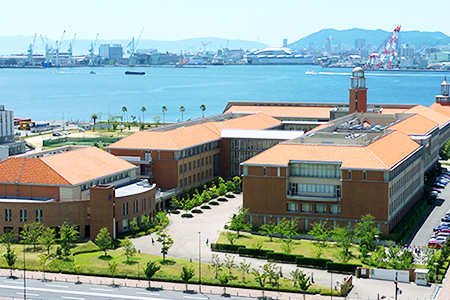 千葉大学 薬学部 薬学科