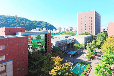 松山大学 薬学部 医療薬学科